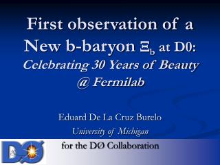 First observation of a New b-baryon   b at D0:  Celebrating 30 Years of Beauty @ Fermilab