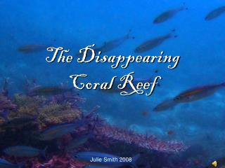 The Disappearing  Coral Reef