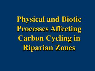 Physical and Biotic Processes Affecting Carbon Cycling in Riparian Zones