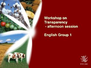 Workshop on Transparency  - afternoon session English Group 1