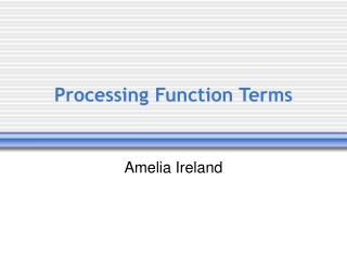 Processing Function Terms