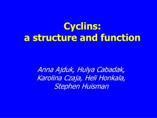 Cyclins:  a structure and function