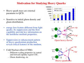 Motivation for Studying Heavy Quarks