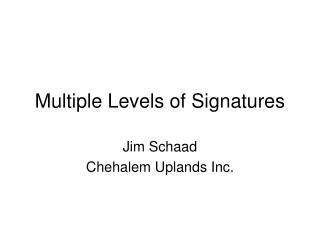 Multiple Levels of Signatures