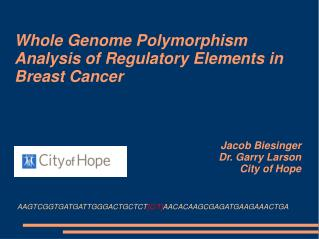 Whole Genome Polymorphism Analysis of Regulatory Elements in Breast Cancer