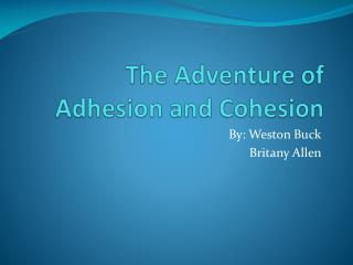 The Adventure of Adhesion and Cohesion