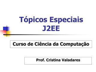 Tópicos Especiais J2EE