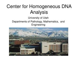 Center for Homogeneous DNA Analysis