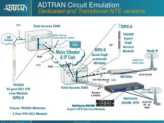 ADTRAN Circuit Emulation Dedicated and Transitional NTE versions