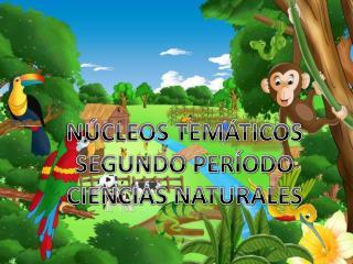 NÚCLEOS TEMÁTICOS SEGUNDO PERÍODO CIENCIAS NATURALES