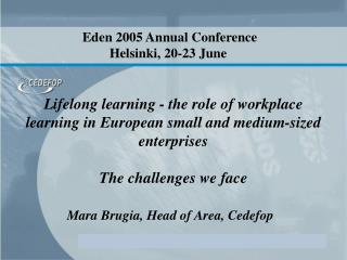 Lifelong learning - the role of workplace learning in European small and medium-sized enterprises