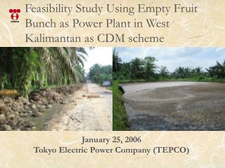 Feasibility Study Using Empty Fruit Bunch as Power Plant in West Kalimantan as CDM scheme