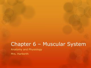 Chapter 6 – Muscular System