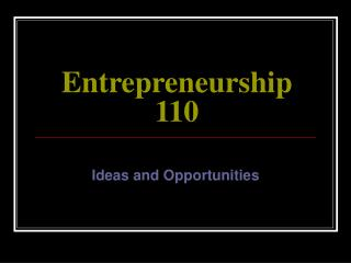 Entrepreneurship 110
