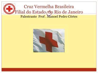 Tema:  Viol�ncia  Dom�stica Rio de Janeiro  2011