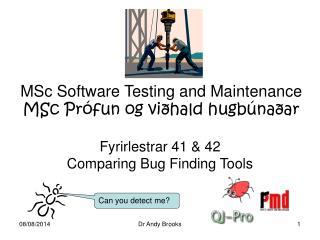 MSc Software Testing and Maintenance MSc Prófun og viðhald hugbúnaðar