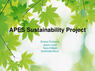 APES Sustainability Project