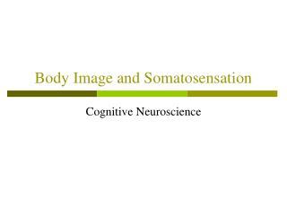 Body Image and Somatosensation