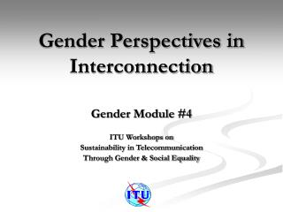 Gender Perspectives in Interconnection