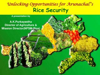Unlocking Opportunities for Arunachal''s Rice Security