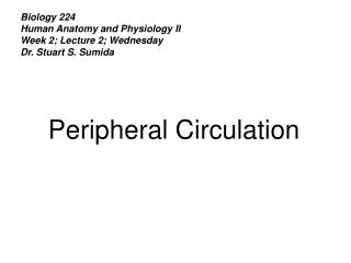 Biology 224 Human Anatomy and Physiology II Week 2; Lecture 2; Wednesday Dr. Stuart S. Sumida