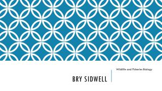 Bry Sidwell