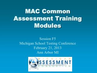 Michigan Assessment Consortium Vision