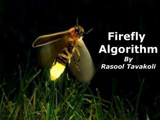 Firefly Algorithm By Rasool Tavakoli