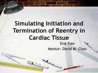 Simulating Initiation and Termination of Reentry in Cardiac Tissue