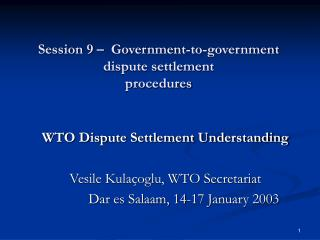Session 9 –  Government-to-government dispute settlement procedures