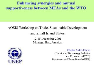 Enhancing synergies and mutual supportiveness between MEAs and the WTO