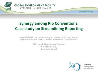 Synergy among Rio Conventions:  Case study on Streamlining Reporting