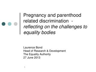 Laurence Bond Head of Research & Development The Equality Authority  27 June 2013