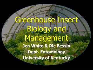 Greenhouse Insect Biology and  Management