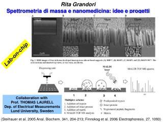 Rita Grandori Spettrometria di massa e nanomedicina: idee e progetti