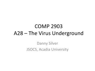 COMP 2903 A28 – The Virus Underground