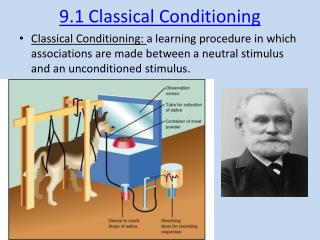 9.1 Classical Conditioning