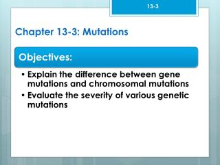 Chapter 13-3: Mutations