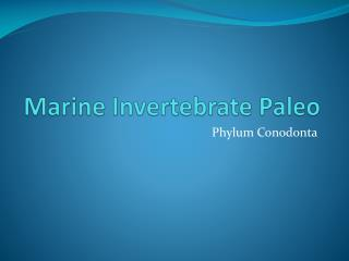 Marine Invertebrate Paleo