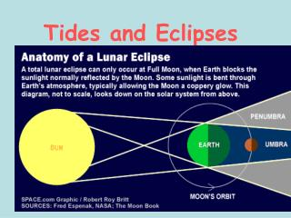 Tides and Eclipses