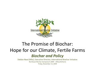 The Promise of Biochar: Hope for our Climate, Fertile Farms