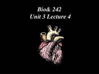 Bio& 242  Unit 3 Lecture 4