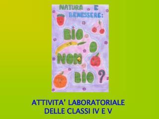 ATTIVITA' LABORATORIALE DELLE CLASSI IV E V