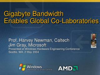 Gigabyte Bandwidth  Enables Global Co-Laboratories