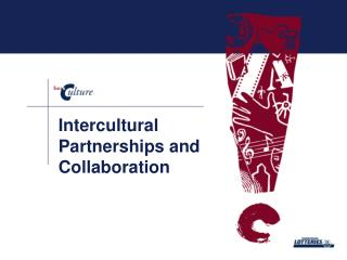 Intercultural Partnerships and Collaboration