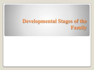 Developmental Stages of the Family