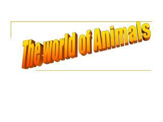 The world of Animals