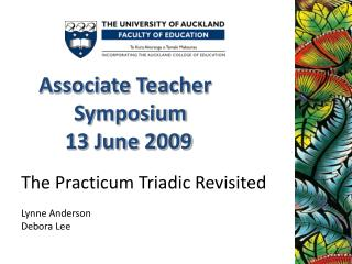 The Practicum Triadic Revisited Lynne Anderson Debora Lee