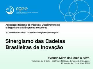 Sinergismo das Cadeias Brasileiras de Inova��o