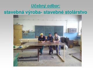 Učebný odbor: stavebná výroba- stavebné stolárstvo